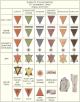 BNY140521 - Concentration Camp Badges
