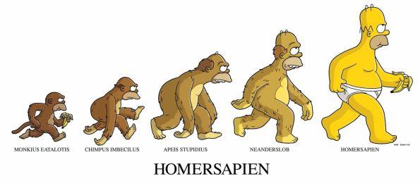AM141006 - Homer Sapien